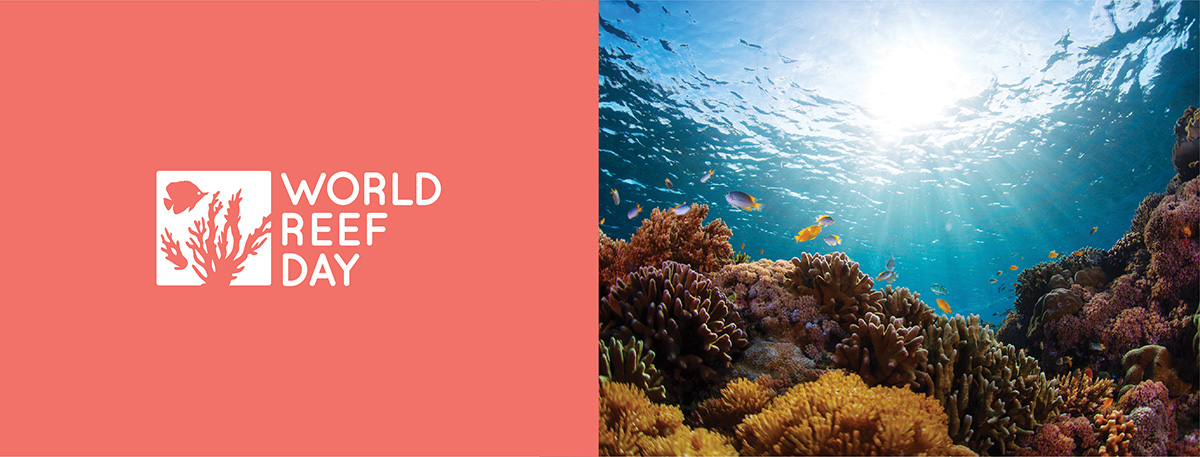 world reef day