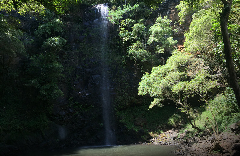 Kayaking on Kauai's Wailua River | Hawaiian Airlines