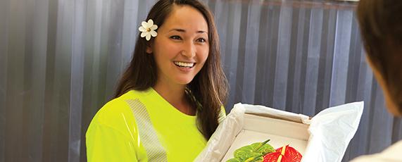 Hawaiian Airlines Cargo